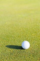 ゴルフボールと新緑の芝生