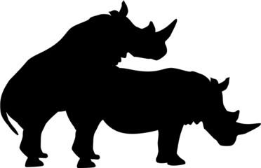Rhinoceroses having sex