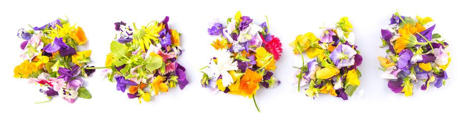 Fototapeta Mix edible flower salad in a blue single pot obraz