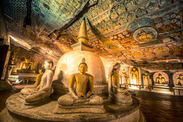 Wall Murals Place of worship Buddha statues in Dambulla Cave Temple, Srilanka