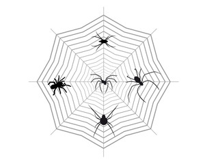 Spiders on a spider web
