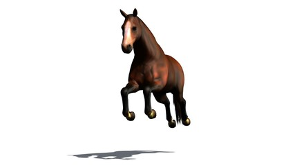 brown horse jumps isolated on white background