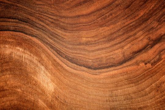 Texture of walnut