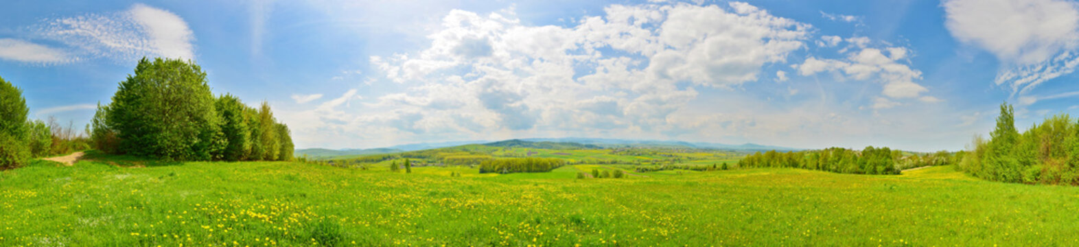 Spring countryside