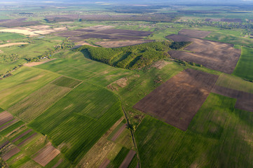 Aerial photography of green fields in Ukraine countryside