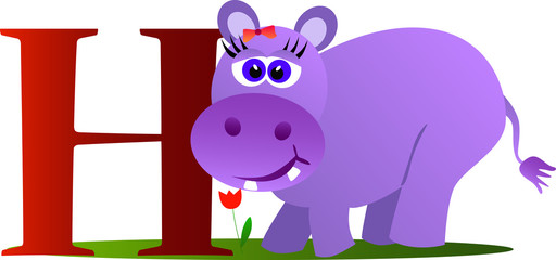Cute hippopotamus with alphabet letter H on white background.
