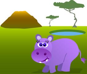 Cute african hippopotamus in wild environment.