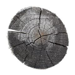 Particolare di un tronco di legno bruciato