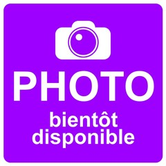 Logo violet : photo bientôt disponible