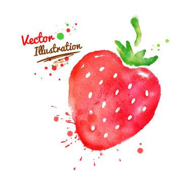 Watercolor strawberry.