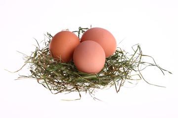 uova di gallina per la pasqua