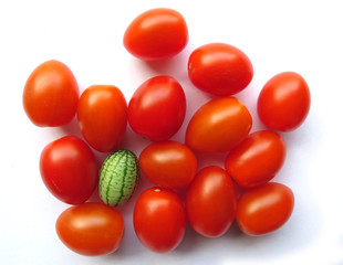 Cucamelon among cherry tomatoes