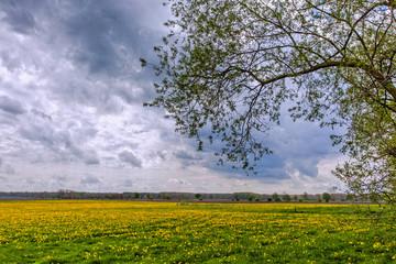 Frühling in Mecklenburg