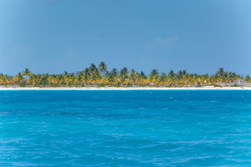Wall Murals Island Caribbean sea and lonely island