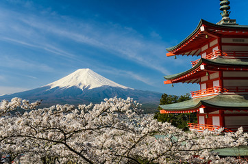 Photo sur Aluminium Japon Mount Fuji with pagoda and cherry trees, Japan