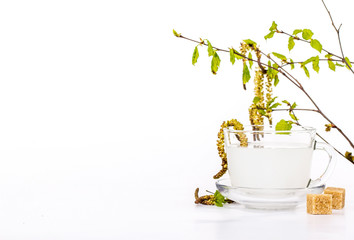 Isolated transparent cup of birch sap with birch leaves