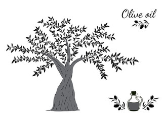 Olive tree and oil