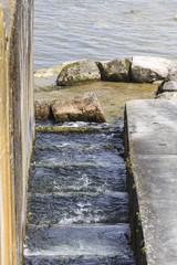 Fischtreppe