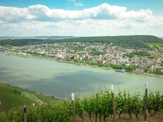 Blick auf den Rhein in Rheinhessen