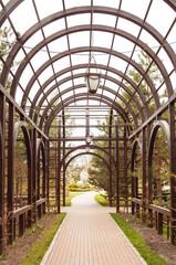 archway in garden