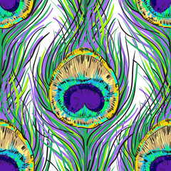 Vector seamless peacock feathers pattern in vivid color