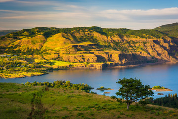 View of the Columbia River from Tom McCall Nature Preserve, Colu