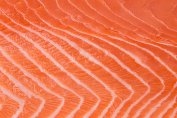 Close up of salmon fillet.