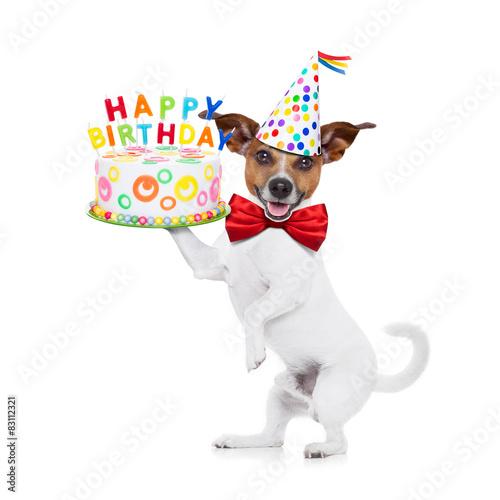 Happy Birthday Dog Stockfotos Und Lizenzfreie Bilder Auf Fotolia