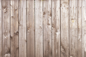 Wall Mural - wood texture