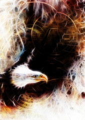 flying eagle beautiful painting illustration, with one dollar