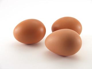 eggs 3 bubbles