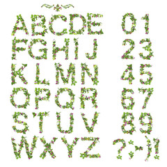 Spring Summer alphabet and number made of flower