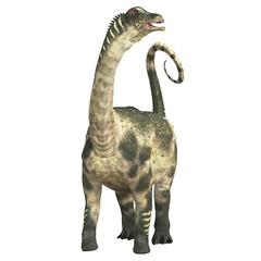 Antarctosaurus over White