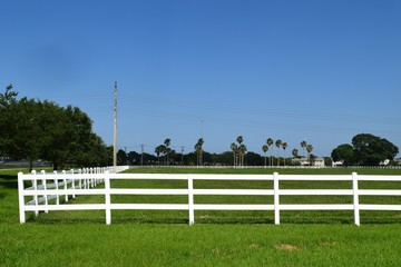 Florida White Picket Fence