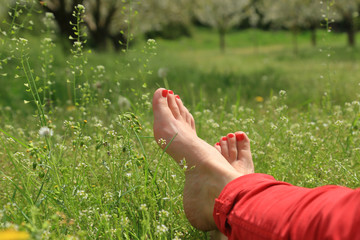 Barefoot female feet on green field with flowers