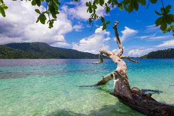 White sand beach in Rawi Island, Tarutao National Park.