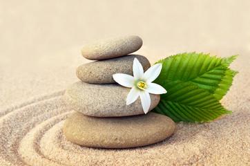 Photo sur Plexiglas Zen pierres a sable Spa concept. Flower and stones.