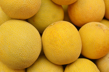 yellow ripe melon