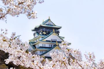 桜と春の大阪城