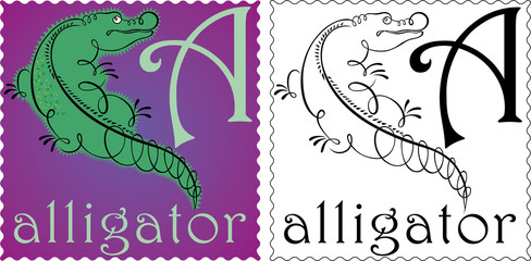 zoo alphabet alligator