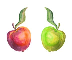 Watercolor apples. Vintage apples.