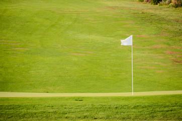 Golf Green Grass Fiel