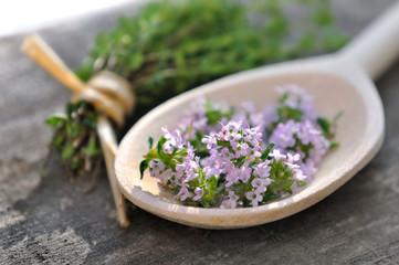 fleurs de thym dans cuillère en bois sur planche