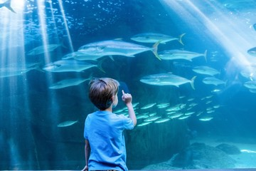 Young man pointing fish in a tank with his finger