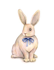 Rabbit with a blue bow is isolated on a white background