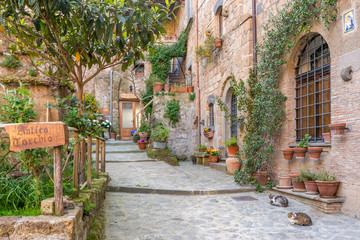Fototapeta Alley in old town Tuscany Italy