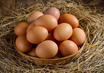 egg in a basket on the dried grass