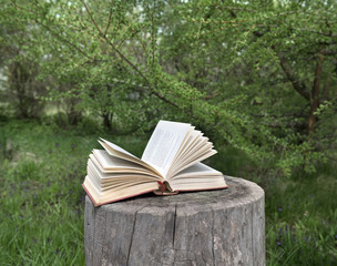 Open poem book lying on old tree stub in the garden