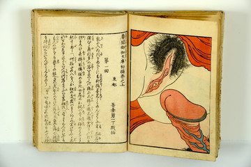 Japanese erotic paintings