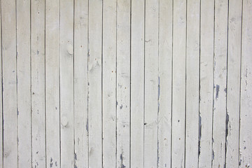 many vertical beige wooden planks with nails, texture